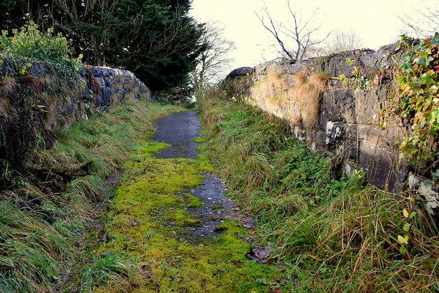Overgrown lane over a disused railway bridge, Creevenagh