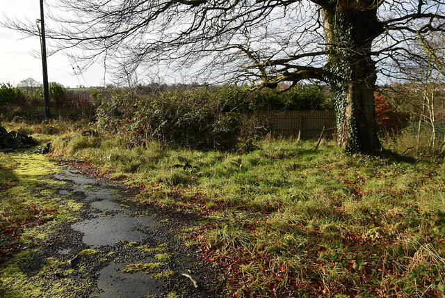 Dead-end to lane, Creevenagh