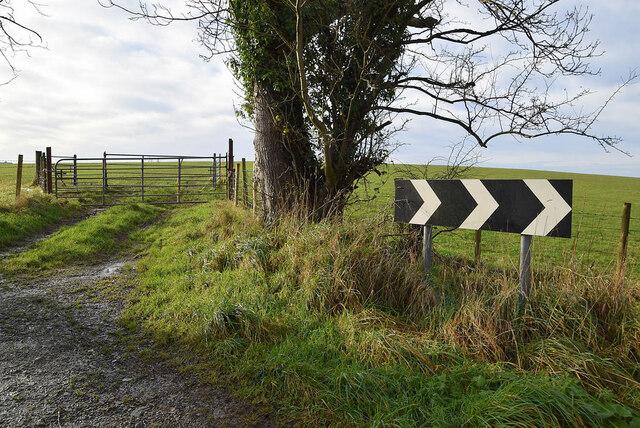 Gate along Crevenagh Road