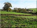 SO8128 : Farmland near Hasfield by Philip Halling