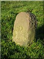 NZ0725 : Old Boundary Marker in Woodland by Mike Rayner