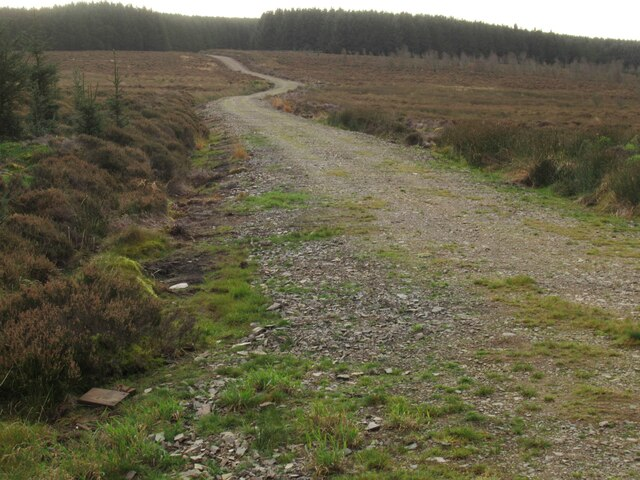 Left turn at junction in Harecleugh Forest