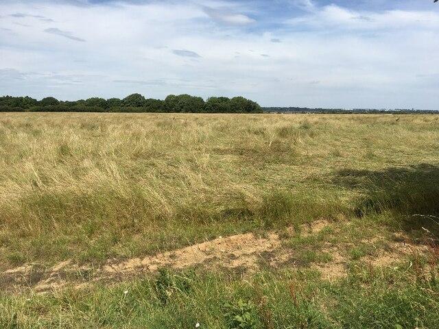 View across Danny Field (26 acres) by Sandy B