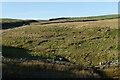 NZ0705 : Washbeck Folds by Andy Waddington
