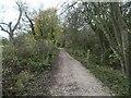 SK3422 : Redundant stile and absent gate, Ticknall tramway by Christine Johnstone