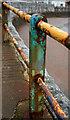 SX9163 : Railings, Torre Abbey Sands by Derek Harper