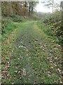 SK3620 : Stone blocks, Ticknall tramway, South Wood by Christine Johnstone