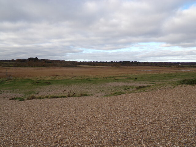 Dingle Marshes, Dunwich