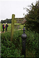 SE9730 : Yorkshire Wolds Way fingerpost at Turtle Hill by Ian S