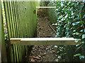 SX9167 : Obstructed footpath, Barton by Derek Harper