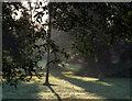J5080 : Castle Park, Bangor by Rossographer