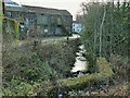 SE1744 : Low Mill, Ellar Ghyll, Menston (detail 2) by Stephen Craven