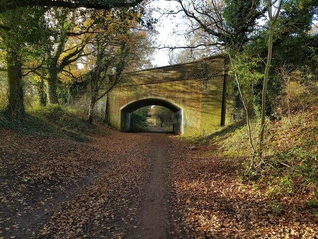 Watford: Ebury Way, Tolpits Lane bridge