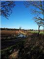 ST8779 : Farm track looking towards Sevington Covert by Vieve Forward