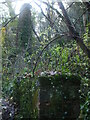 ST7348 : An ivy-covered chimney in the valley by Neil Owen