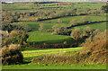 SX8855 : Farmland around Brim Hill by Derek Harper