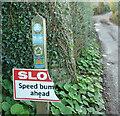 SX8854 : Slo speed bum ahead, Higher Greenway by Derek Harper