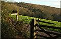 SX8754 : Gates and signpost. Greenway by Derek Harper