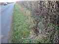 ST9195 : Milestone, A433 near the Troubled House by Mr Red