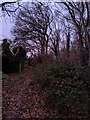 TF0820 : A brown morning by Bob Harvey