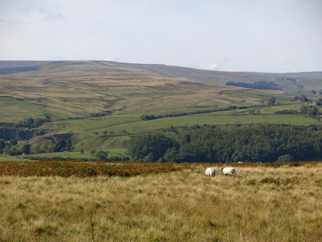 Weardale below Round Hill
