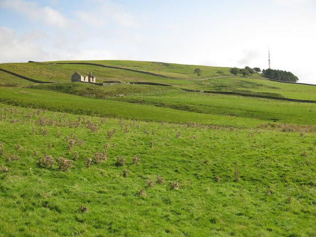 Rough pastures below Pit House