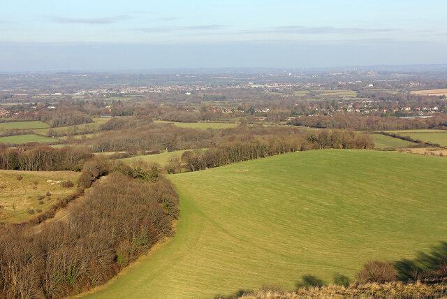 Wellcombe Bottom by Wayland Smith
