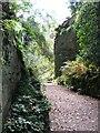 NZ0878 : Rock garden, Belsay Hall by Gordon Hatton