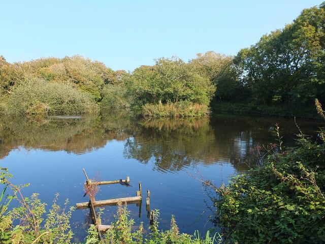Pond near Trudnoe Farm