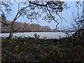 TF0820 : A frosty morning by Bob Harvey