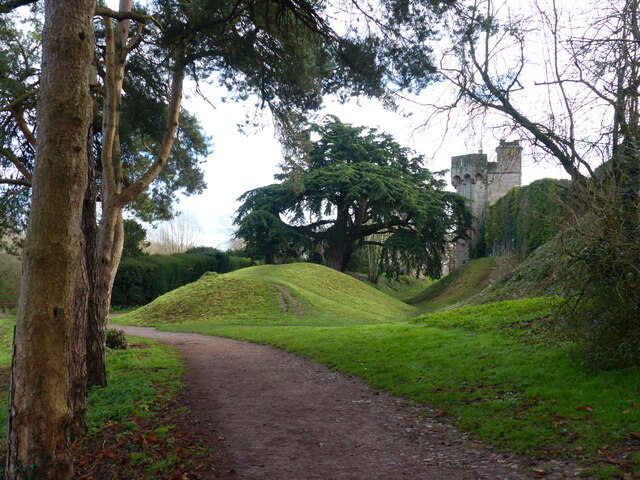 Earthwork for moat, with cedar tree, Caldicot Castle