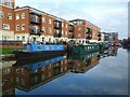 SO8554 : Worcester and Birmingham Canal at Diglis by Philip Halling