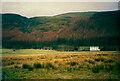 NY0815 : View towards Crag Farm House, Ennerdale by Humphrey Bolton