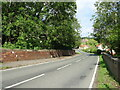 SE5377 : Road into Coxwold by JThomas