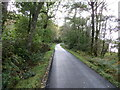 NN0014 : A section of tree-lined road (B840) beside Loch Awe by Peter Wood