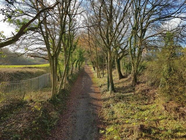 Hemel Hempstead: The Nicky Line