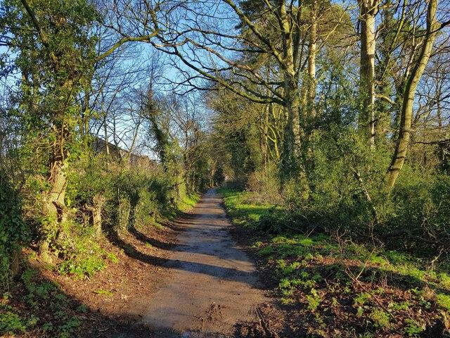 Hemel Hempstead: Piccotts End Lane