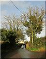 SX9271 : Long Lane by Derek Harper
