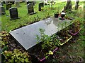 SO7646 : The grave of Peter Mark Roget by Philip Halling