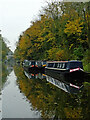 SJ8709 : Moored narrowboats near Brewood in Staffordshire by Roger  Kidd