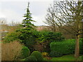 NT2470 : Morningside - Midday Christmas 2020 by M J Richardson