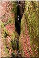 NH5966 : Looking upstream in Black Rock Gorge by Julian Paren
