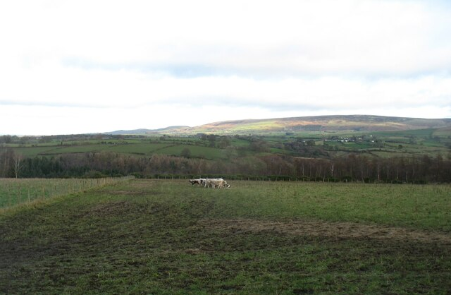 Country above the River Eden