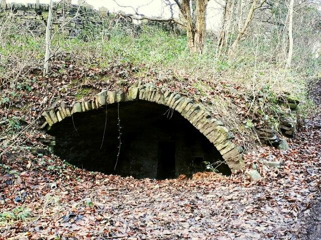Remains of Throstle Nest, Shepherds Thorn Lane