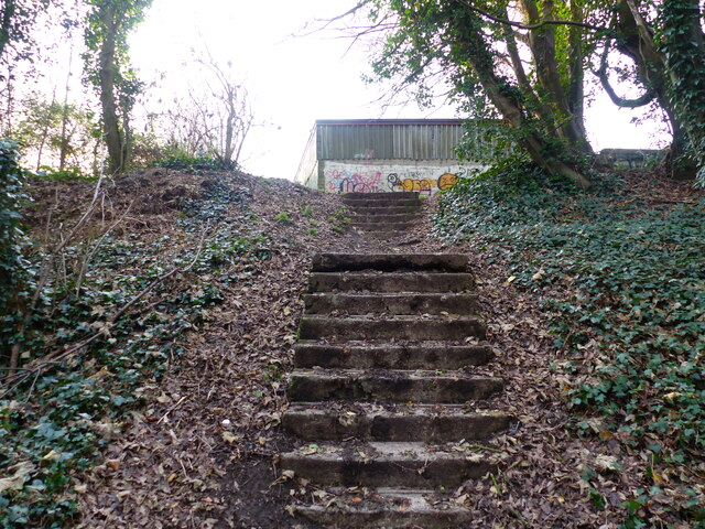 Top of the steps from the disused quarry, Chepstow
