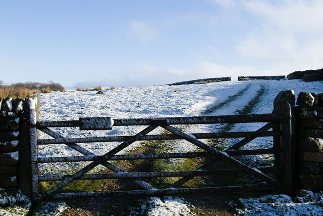 Gate and field, Shaws Ridge