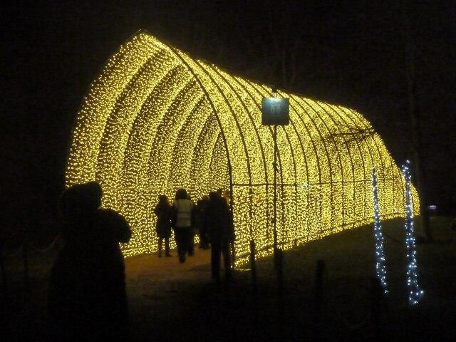 Blenheim Illuminations - (14) - Golden tunnel - exterior