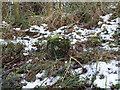 SO9315 : Boundary Stone, Barrow Wake by Mr Red