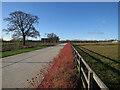 TL4258 : Path on West Cambridge Site by Hugh Venables