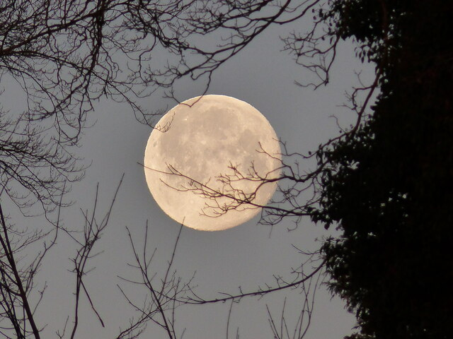 Close-up of moonset, on the last day of 2020